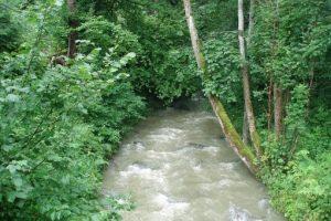 Woda zaczerpnięta z górskiego potoku także nie powinna wpływać negatywnie na jakość betonu